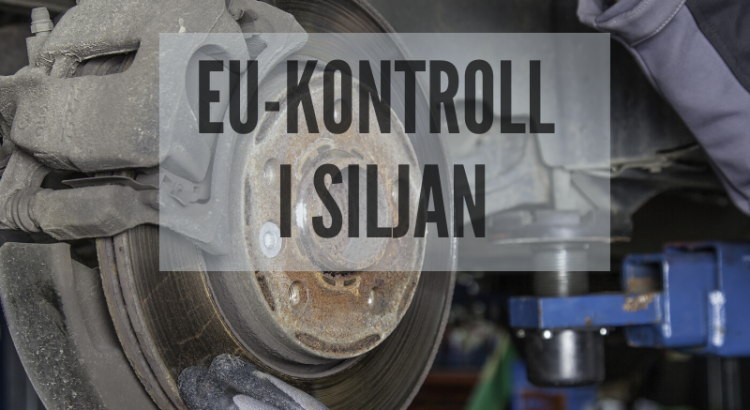 EU-kontroll i Siljan